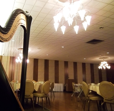 Harpist at Teibel's - Corporate Party Music