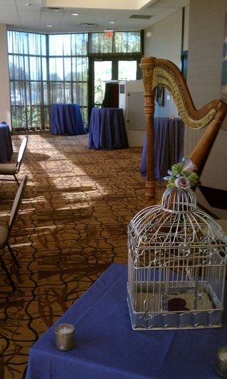 South Bend Harpist for Weddings