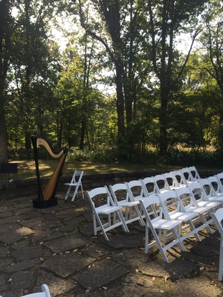 Springfield Illinois Wedding Musician