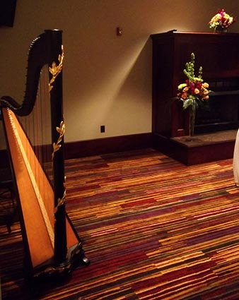 Central Illinois Wedding Harpist