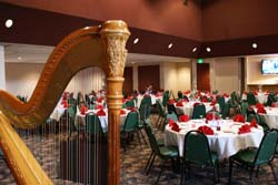 South Bend Indiana Harpist for a Wedding Reception