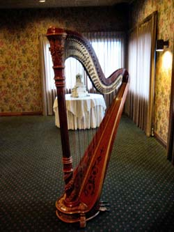 Wedding Reception Music Harp Northwest Indiana