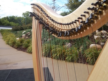 Battle Creek Harpist for an Outdoor Wedding Ceremony