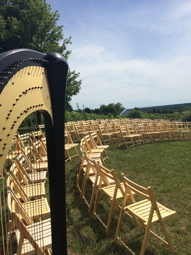 Harpist for Traverse City Vineyard Weddings