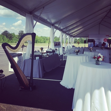 Tuscaloosa Wedding Harpist