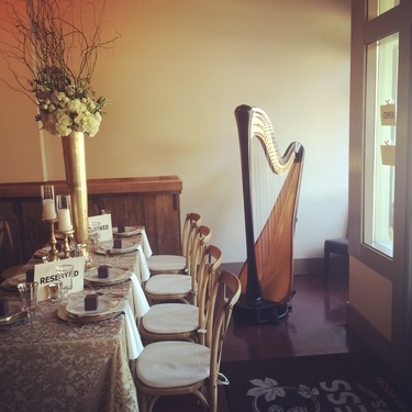 Central Michigan Wedding Harpist
