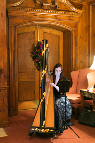 Central Iowa Wedding Harpist