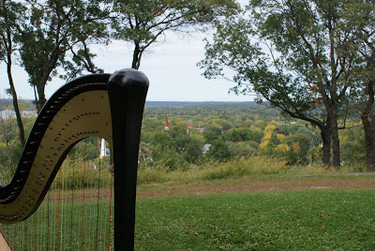Minneapolis and Western Wisconsin Harpist