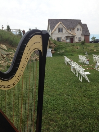 Western Wisconsin Wedding Harpist