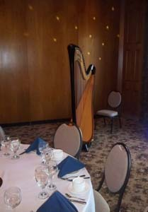 Wicker Park Wedding Reception Music Harpist NWI
