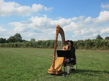 Harp for a Wedding in Southwest Michigan