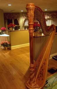 South Bend Harpist for Parties
