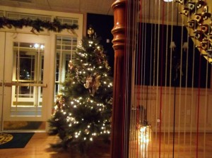 Harpist in South Bend