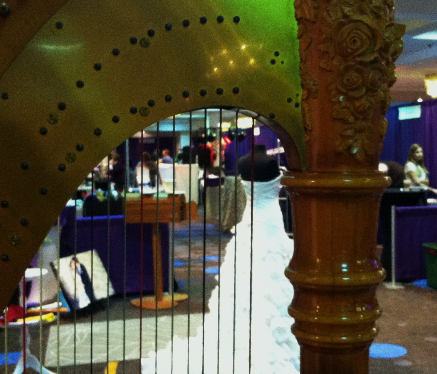 Central Illinois Wedding Planning Music Expo