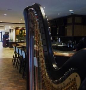 Notre Dame Harpist