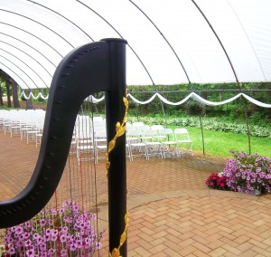 Northwest Indiana Harpist for Weddings