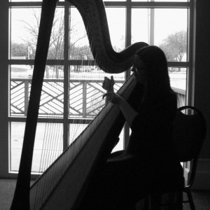 Harp Player Southwest Michigan
