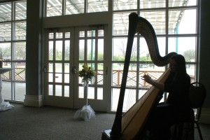 St. Joseph Michigan Harpist