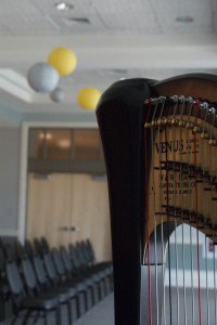 Southwest MI Wedding Harp Music