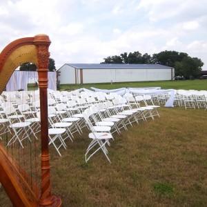 Central IL Wedding Harpist