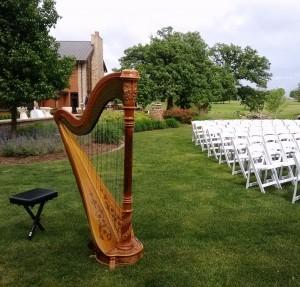 LaSalle Illinois Harpist