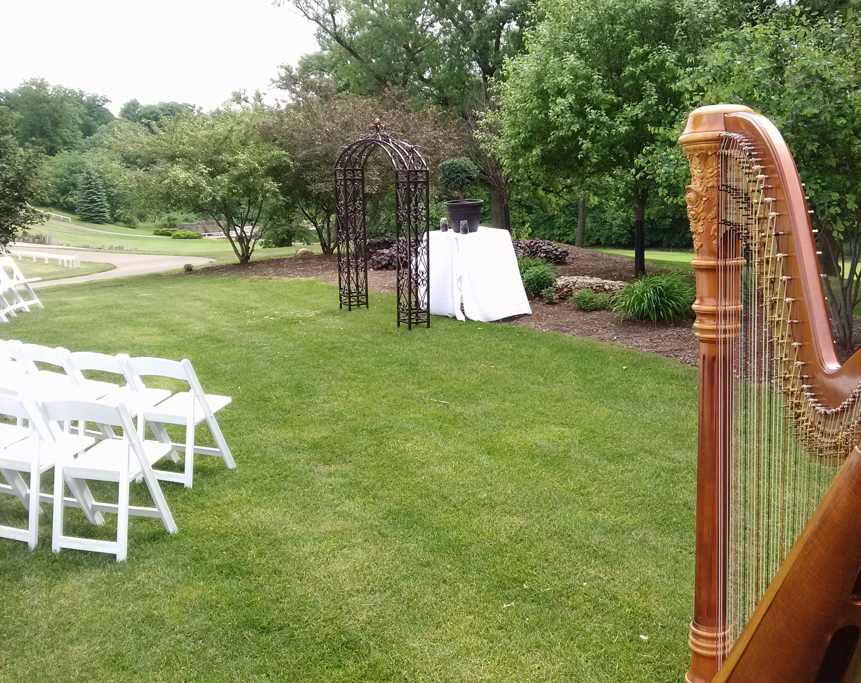 Lasalle Il Wedding Harpist