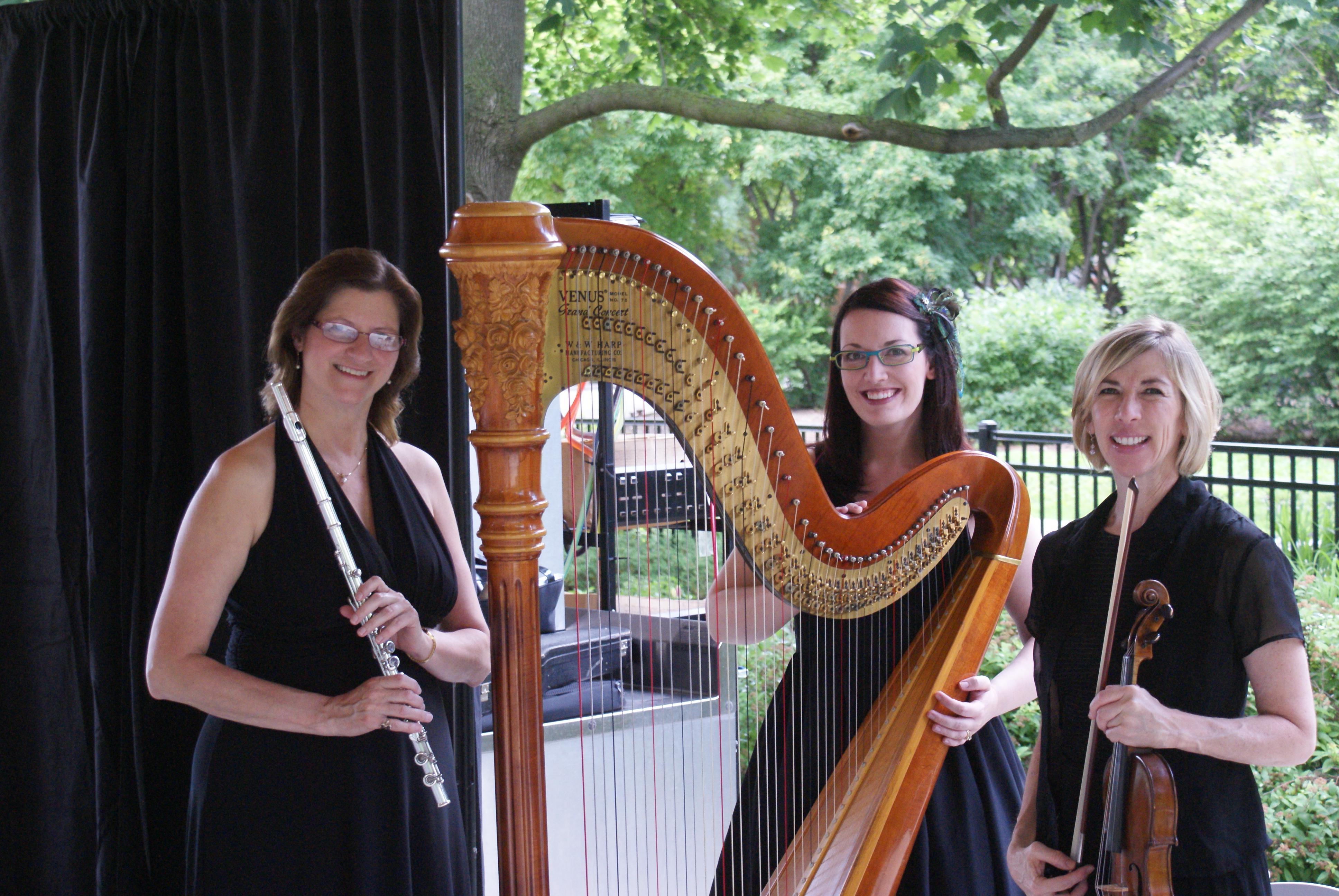 Chicago Wedding Harpist Brookfield Zoo Tail Hour