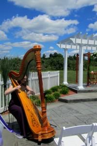 Louisville Kentucky Wedding Harpist