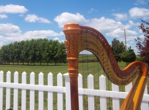 Louisville Wedding Music Harp