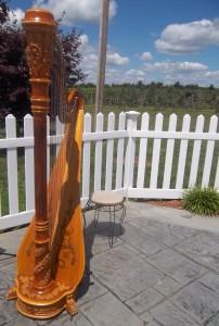 Southern IN Wedding Harpist