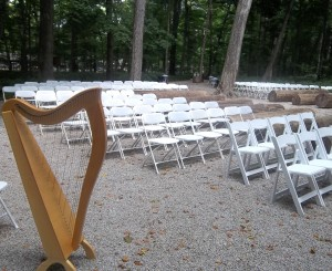 Bloomington IL Wedding Harpist