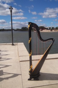 Chicago Wedding Harpist Centennial Park Munster