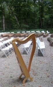 Illinois Wedding Harpist in Bloomington