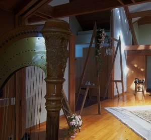 Saginaw Harpist