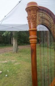 Springfield Wedding Harpist
