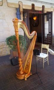 Birmingham MI Harpist