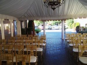 Novi Michigan Harpist for Weddings