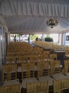 Detroit Harpist for Weddings