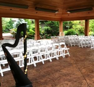 Rockford Wedding Musician