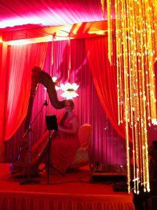 Gujarat International Wedding Musician
