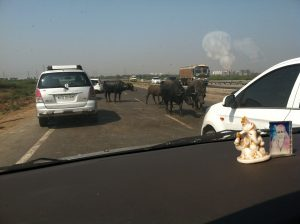 Drive to Surat