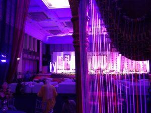 Ahmedabad harpist