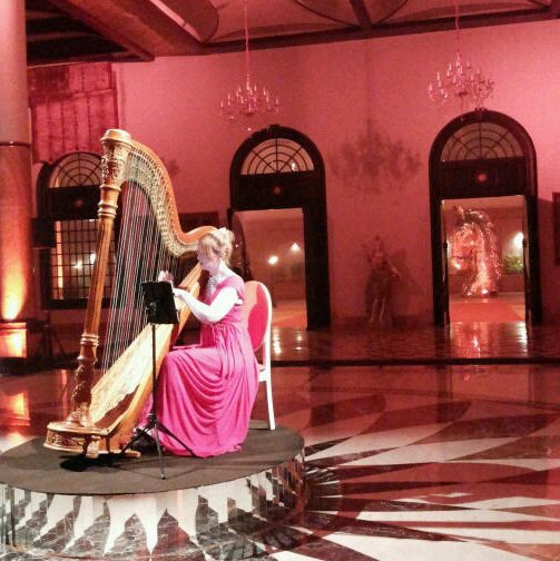 Delhi wedding musician