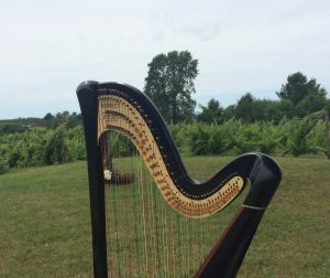 Traverse City Harpist