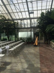 South Bend Wedding Harpist - Potawatomi Conservatory