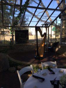 Champaign-Urbana Wedding Harpist