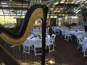 Central Illinois Wedding Reception Harpist