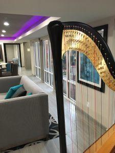 Effingham Illinois Harpist