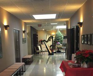 Chicago Harpist for Christmas