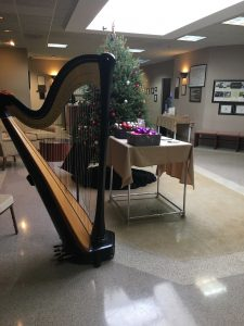 Chicago Harp Player for the Holidays